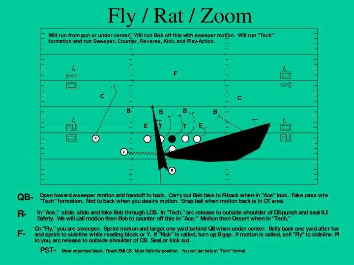 Fly / Rat / Zoom