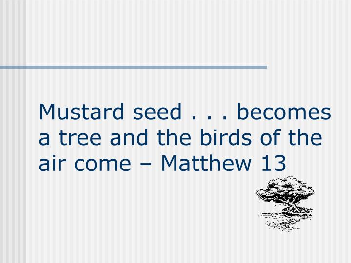 Mustard seed . . . becomes a tree and the birds of the air come  Matthew 13
