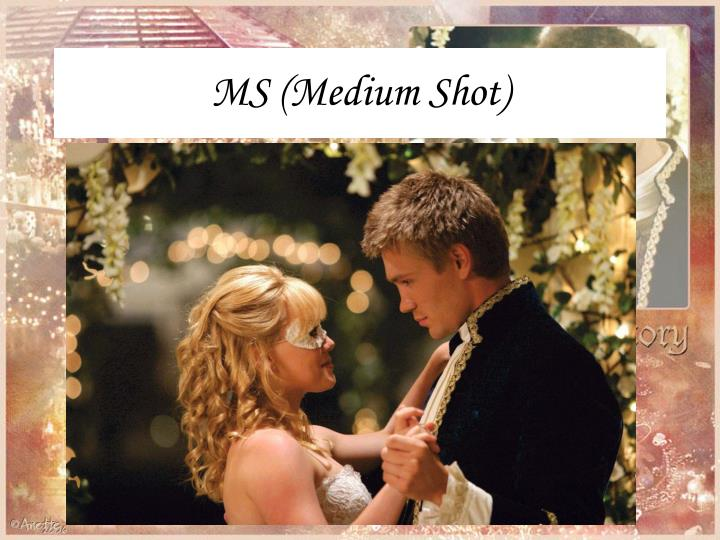 MS (Medium Shot)