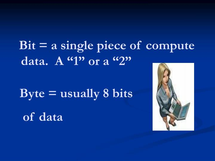 "Bit = a single piece of compute data.  A ""1"" or a ""2"""