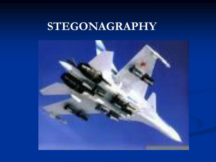 STEGONAGRAPHY