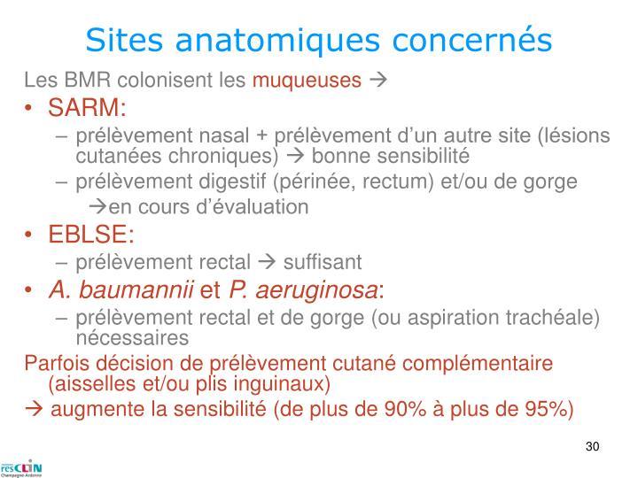 Sites anatomiques concernés