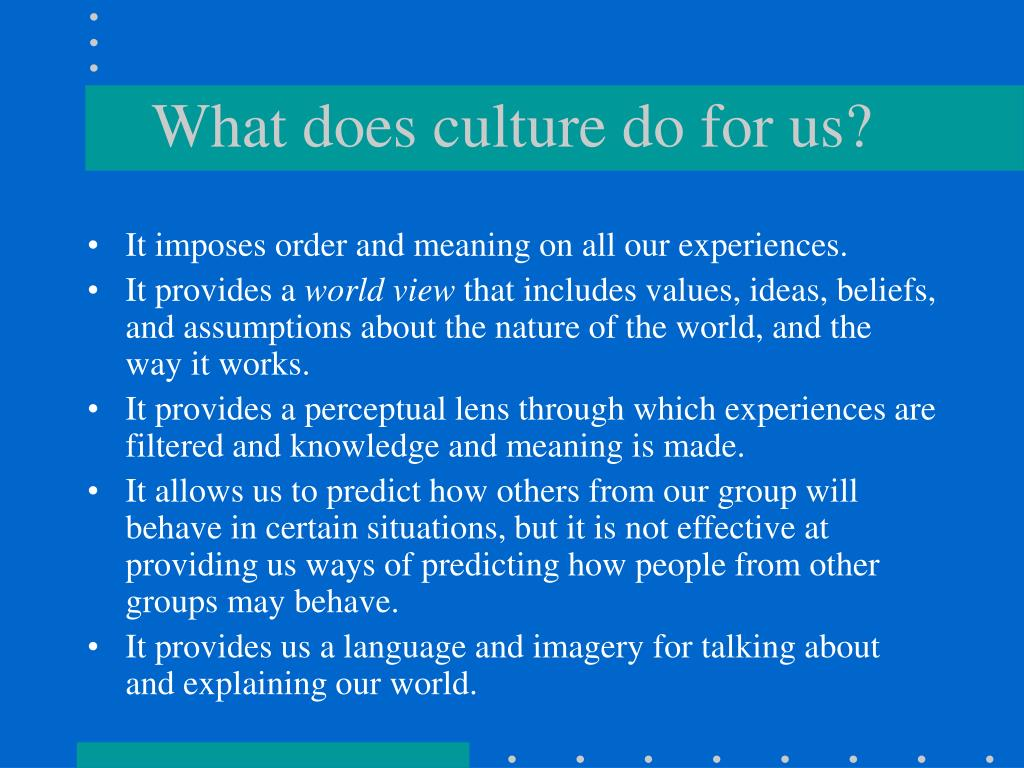 What does culture do for us?