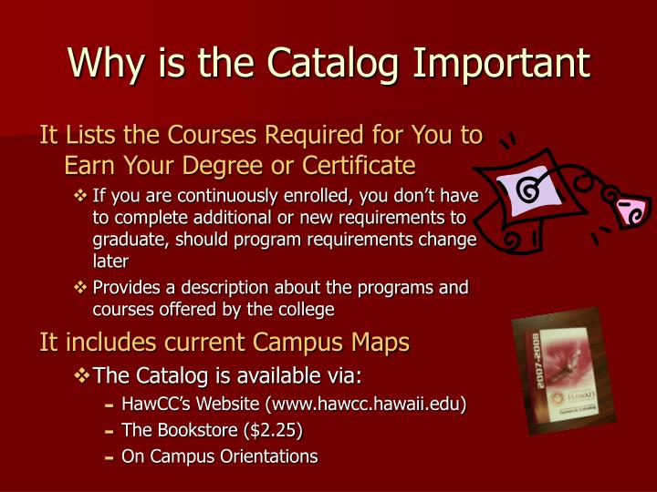 Why is the Catalog Important