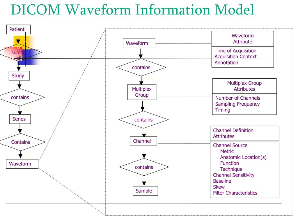 DICOM Waveform Information Model