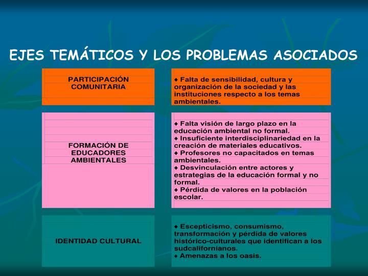 EJES TEMTICOS Y LOS PROBLEMAS ASOCIADOS