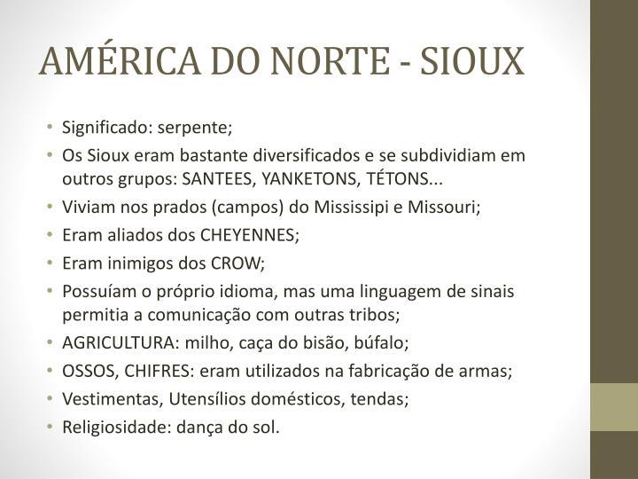AMÉRICA DO NORTE - SIOUX