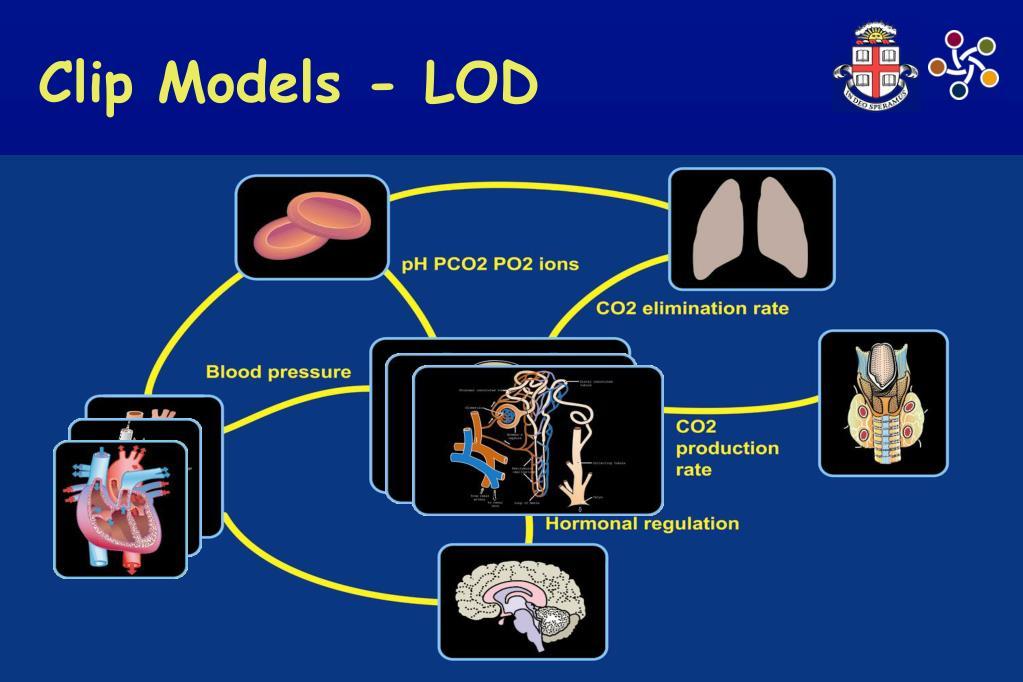 Clip Models - LOD