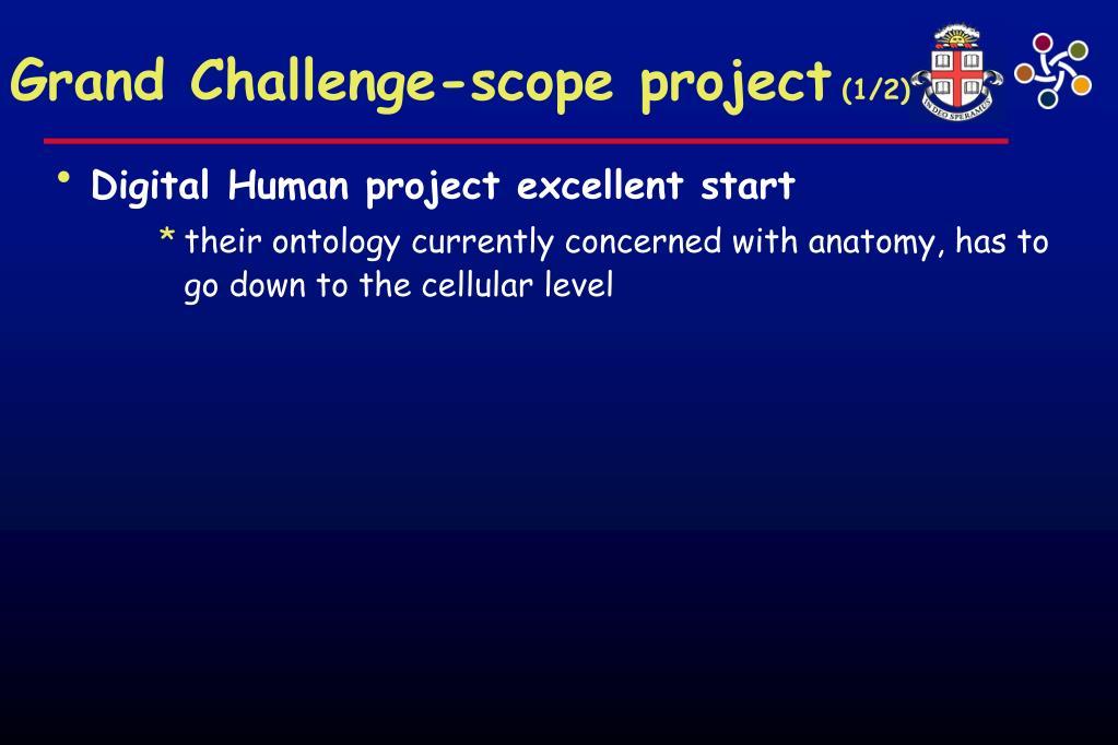 Grand Challenge-scope project