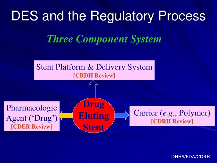 DES and the Regulatory Process