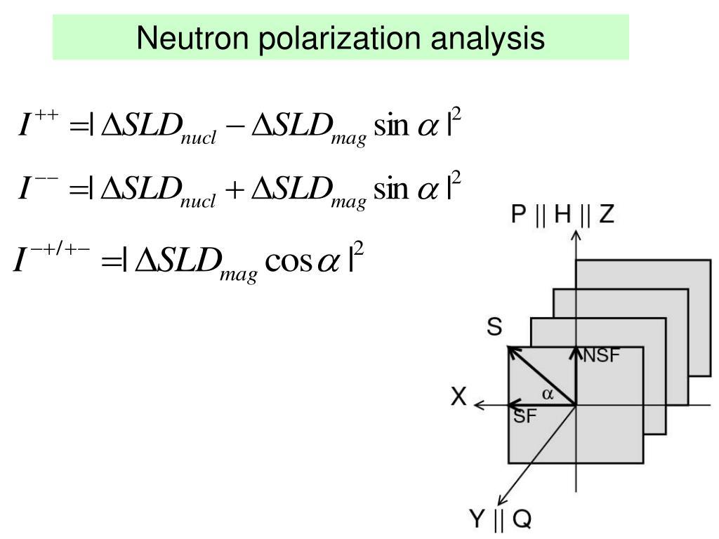 Neutron polarization analysis