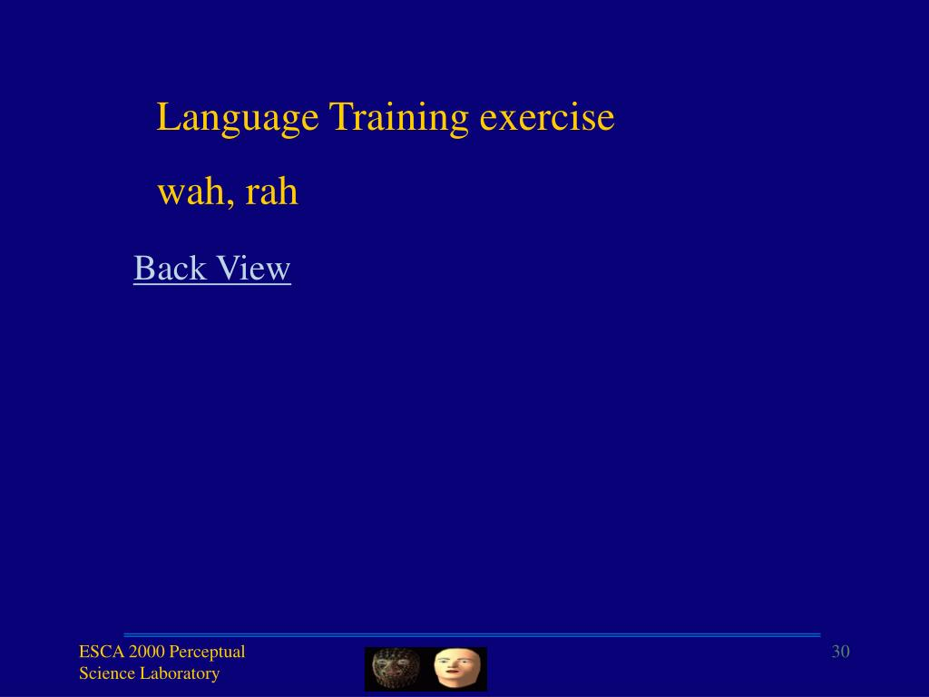 Language Training exercise