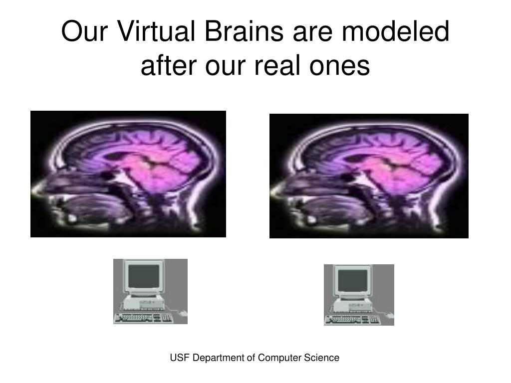 Our Virtual Brains are modeled after our real ones