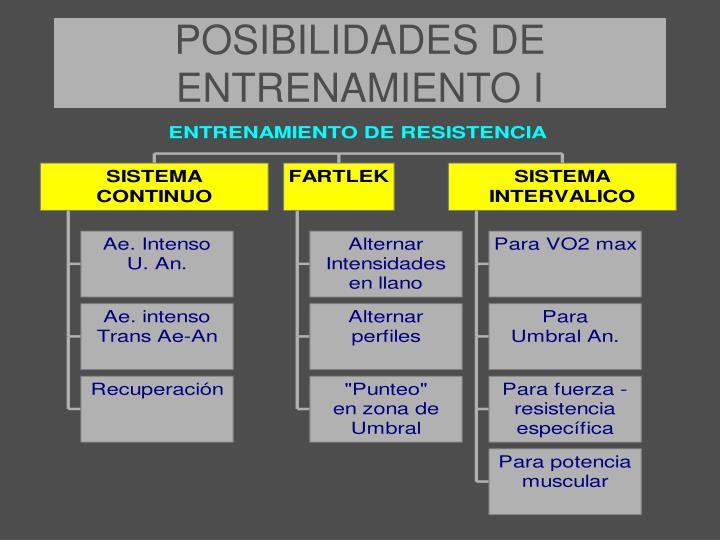 POSIBILIDADES DE ENTRENAMIENTO I