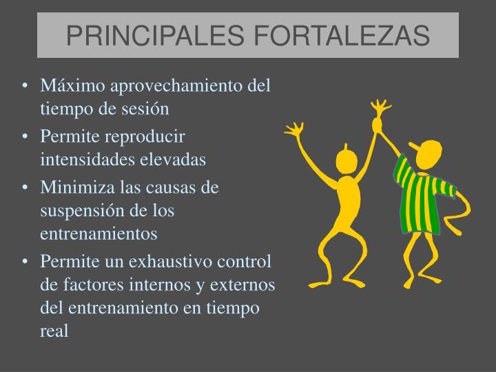 PRINCIPALES FORTALEZAS