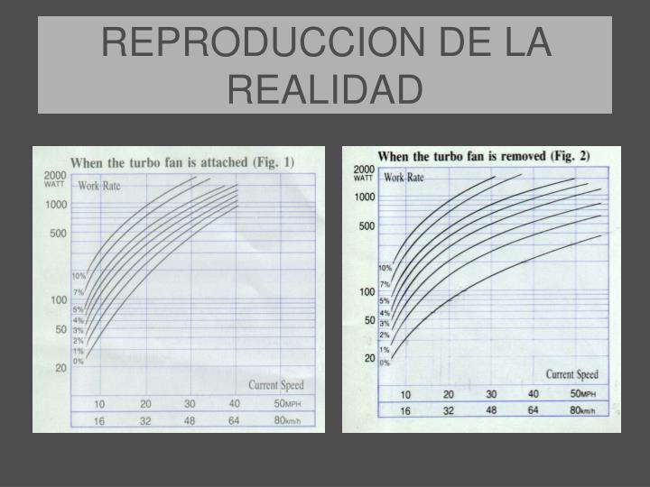 REPRODUCCION DE LA REALIDAD