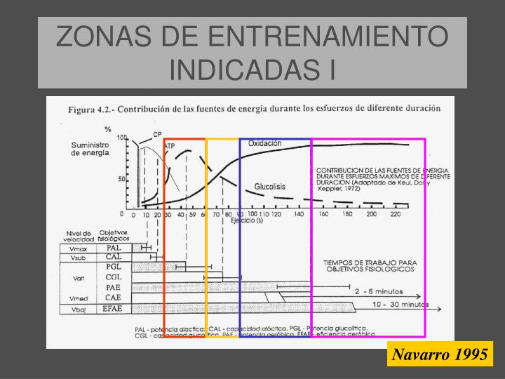 ZONAS DE ENTRENAMIENTO INDICADAS I