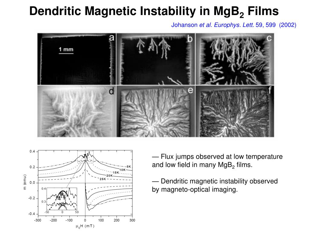 Dendritic Magnetic Instability in MgB