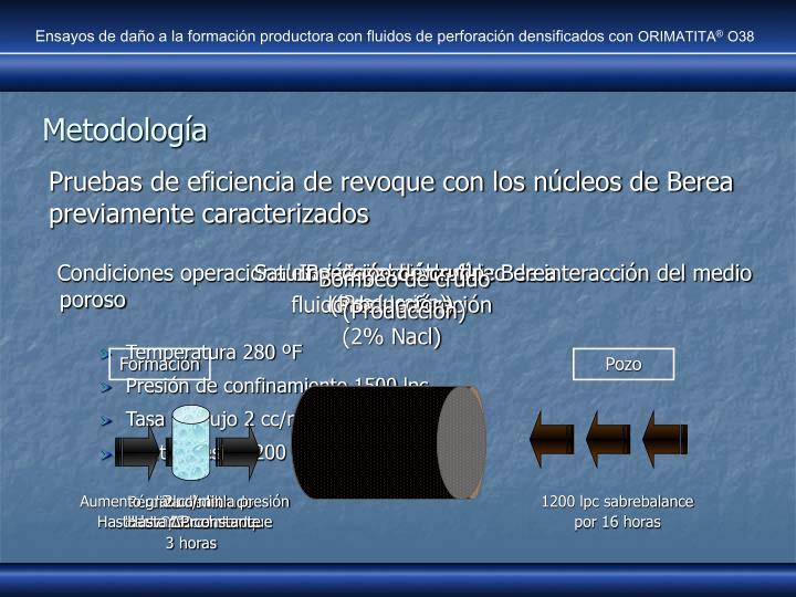 Ensayos de daño a la formación productora con fluidos de perforación densificados con