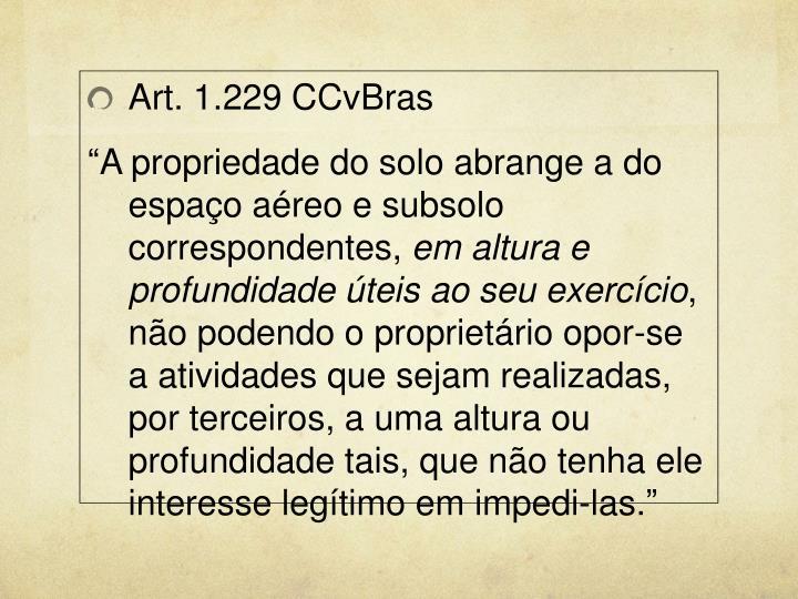 Art. 1.229 CCvBras