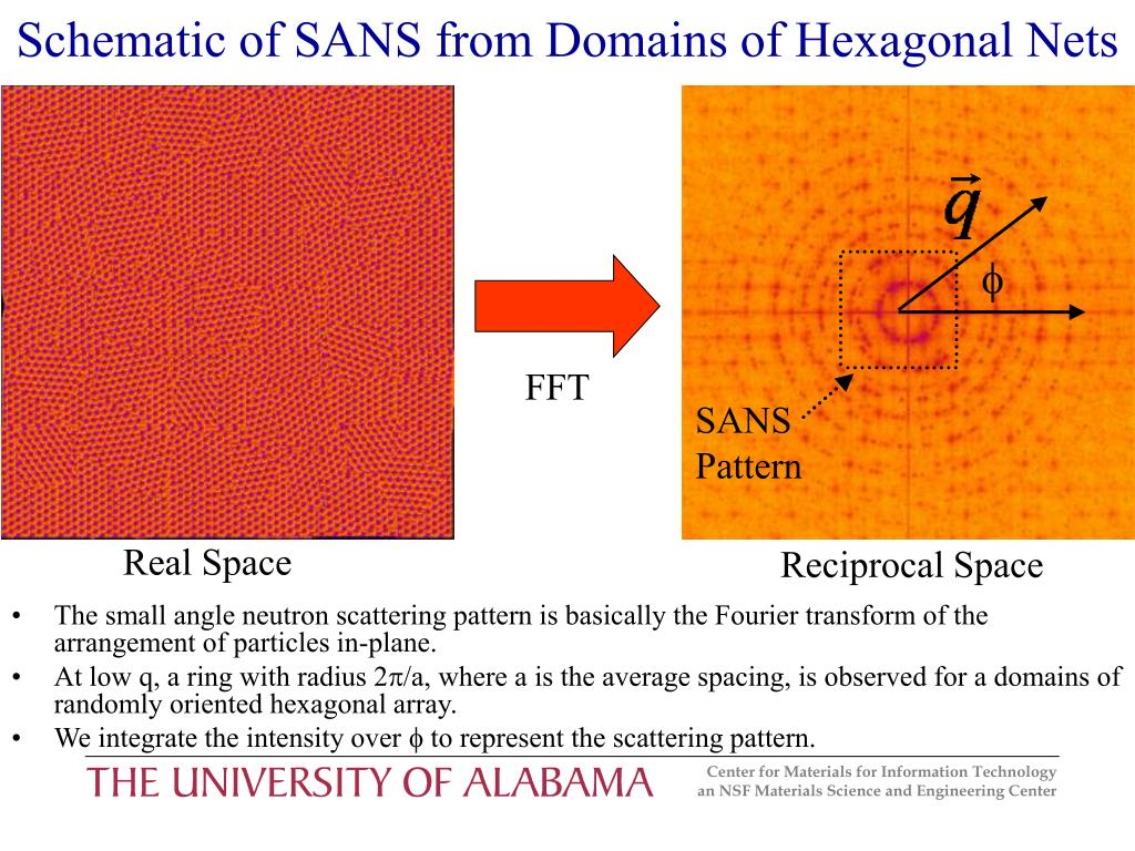 Schematic of SANS from Domains of Hexagonal Nets
