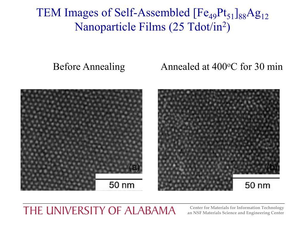 TEM Images of Self-Assembled [Fe