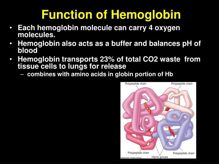 Function of Hemoglobin