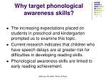 why target phonological awareness skills