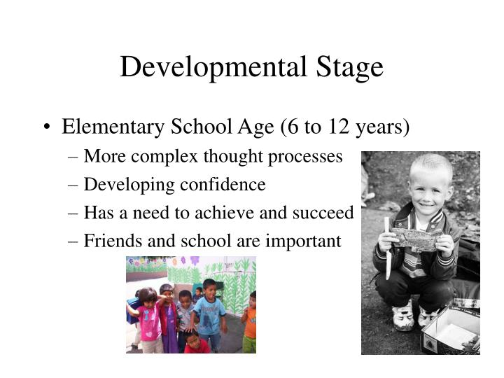 Developmental Stage