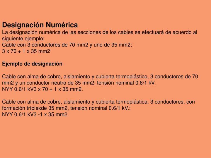 Designación Numérica