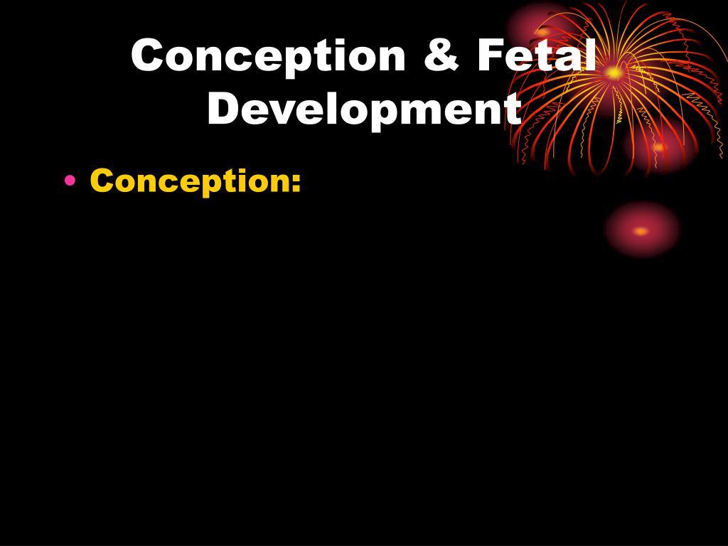 Conception & Fetal Development