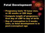 fetal development60