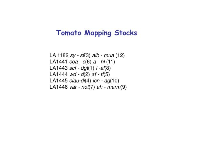 Tomato Mapping Stocks