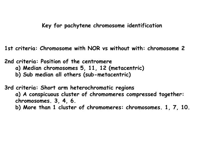 Key for pachytene chromosome identification