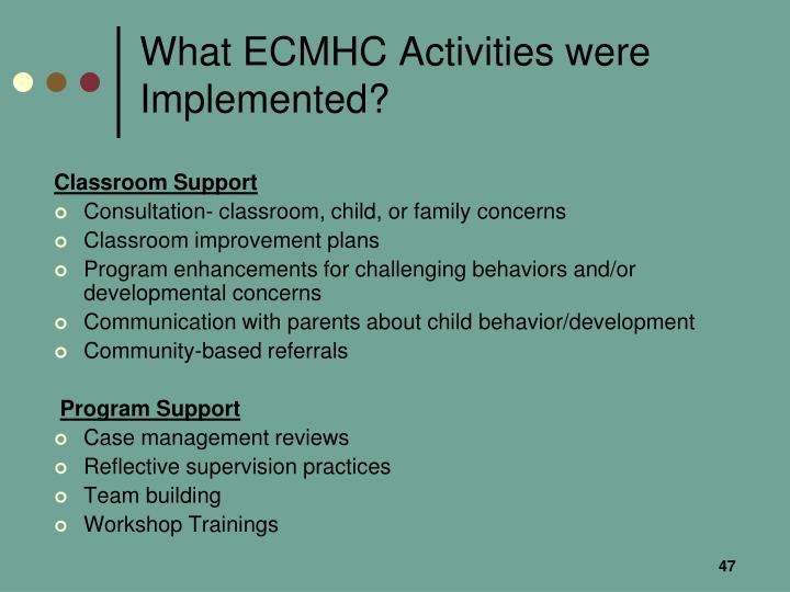 What ECMHC Activities were Implemented?