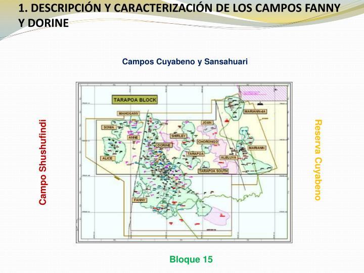 1. DESCRIPCIÓN Y CARACTERIZACIÓN DE LOS CAMPOS FANNY Y DORINE