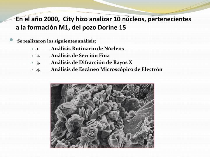 En el año 2000,  City hizo analizar 10 núcleos, pertenecientes a la formación M1, del pozo Dorine 15