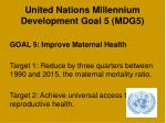 united nations millennium development goal 5 mdg5