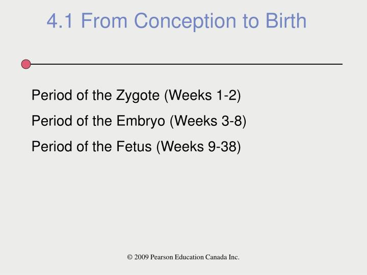 4.1 From Conception to Birth