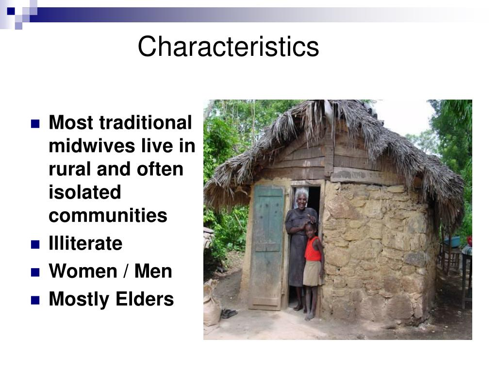 Most traditional midwives live in rural and often isolated communities