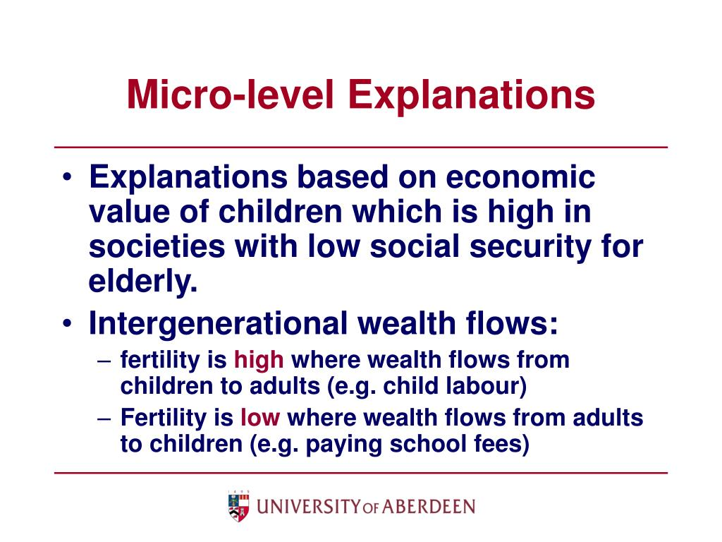 Micro-level Explanations