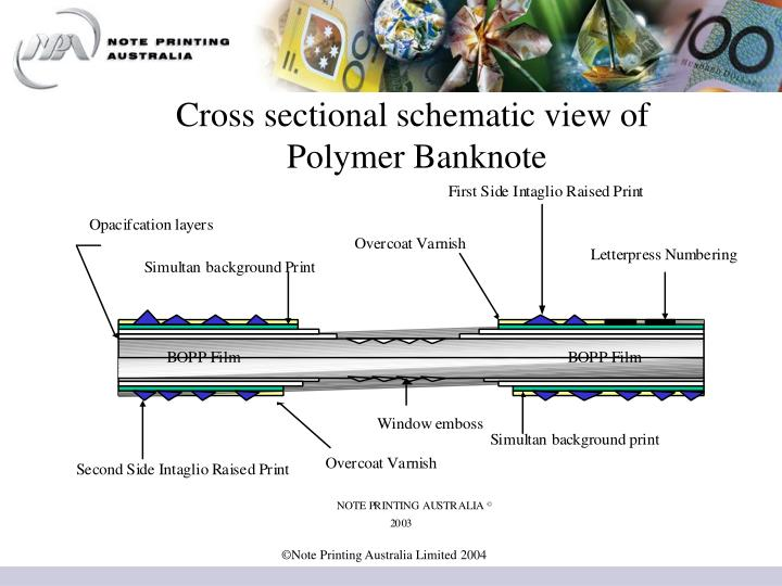 Cross sectional schematic view of