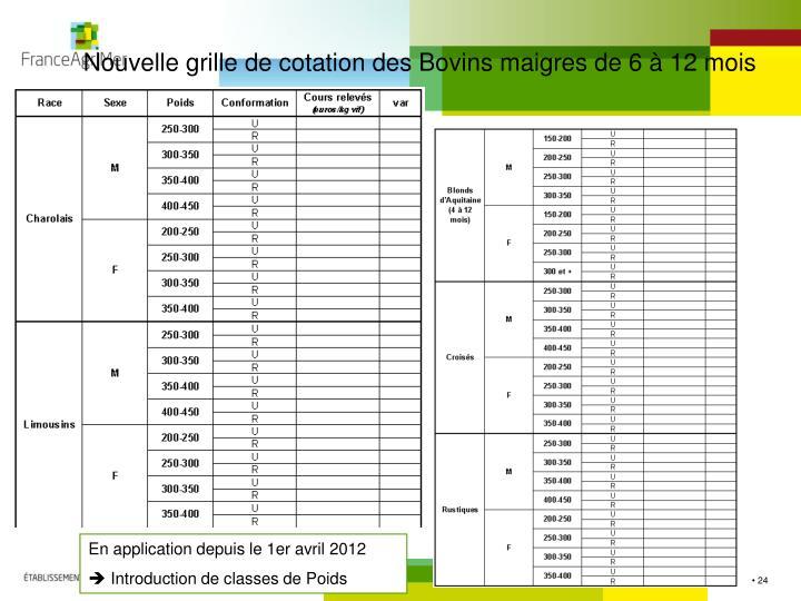 Nouvelle grille de cotation des Bovins maigres de 6 à 12 mois