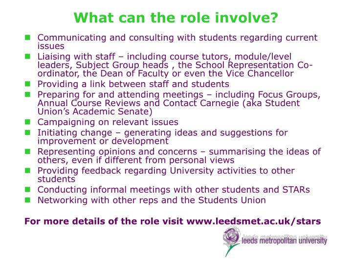 What can the role involve