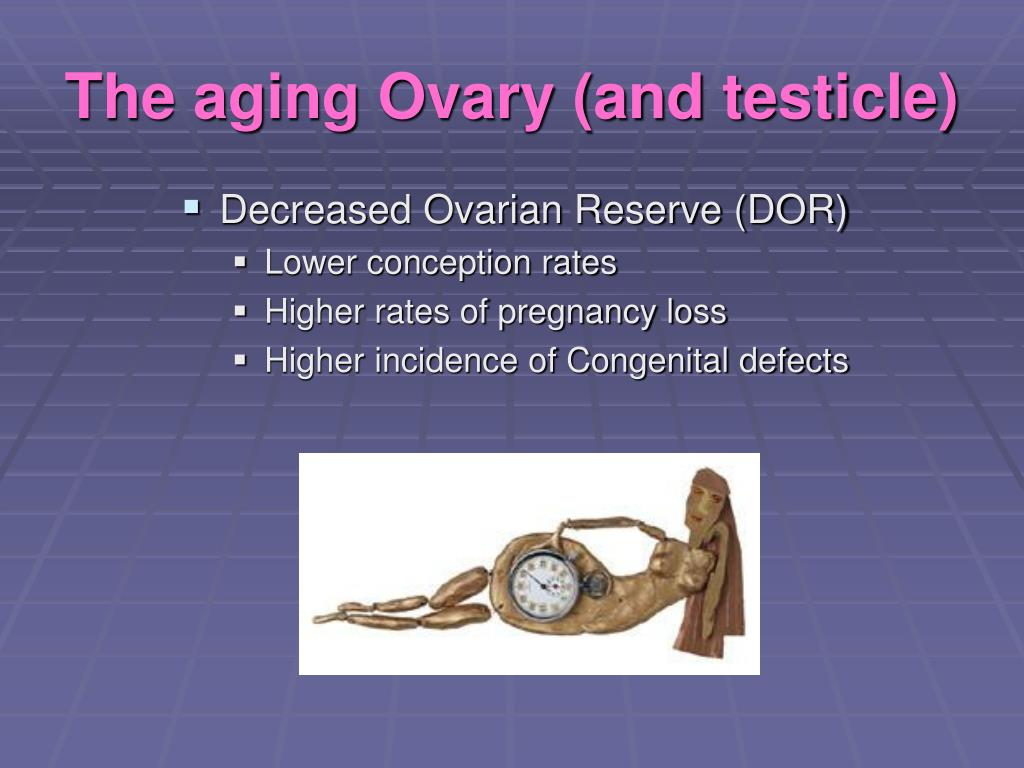 The aging Ovary (and testicle)
