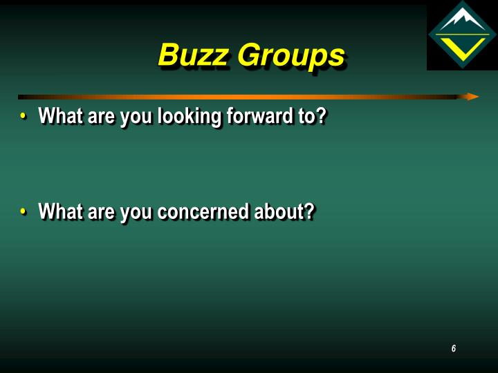 Buzz Groups