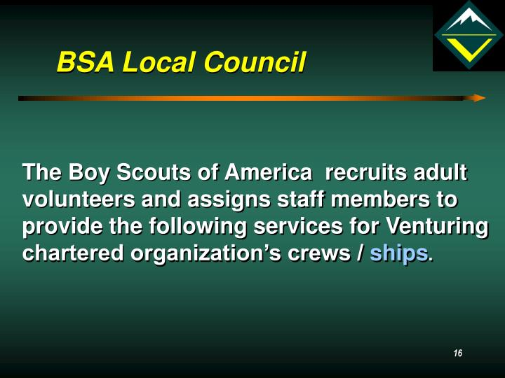 BSA Local Council