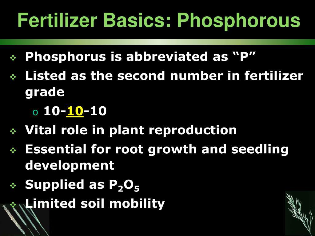 Fertilizer Basics: Phosphorous