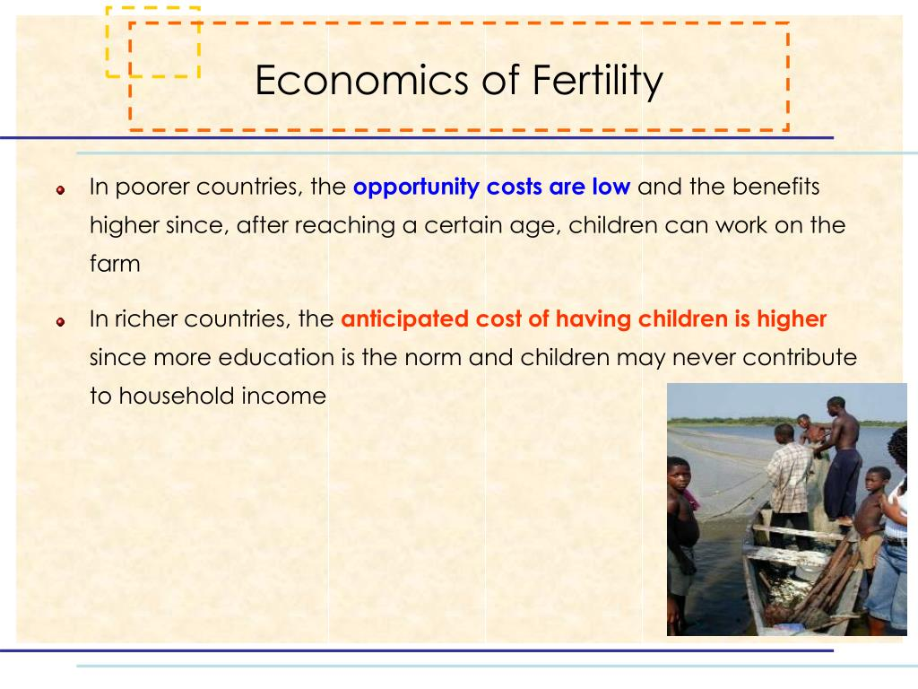 Economics of Fertility