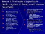 theme 3 the impact of reproductive health programs on the economic status of households